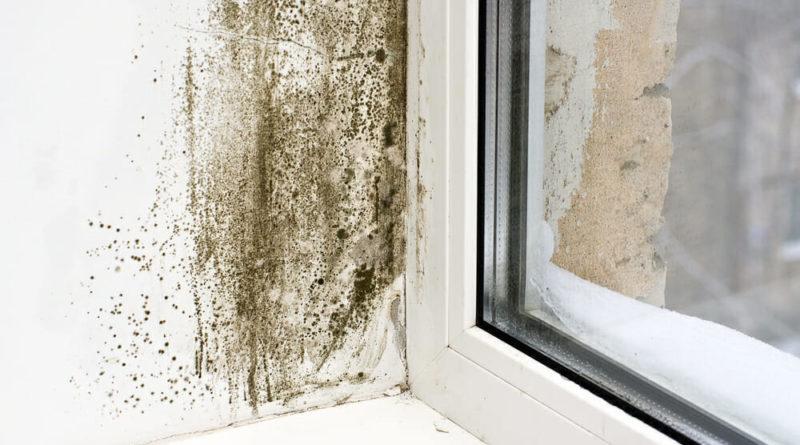 humidité dans la maison